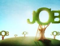 Job Tree | PCRS