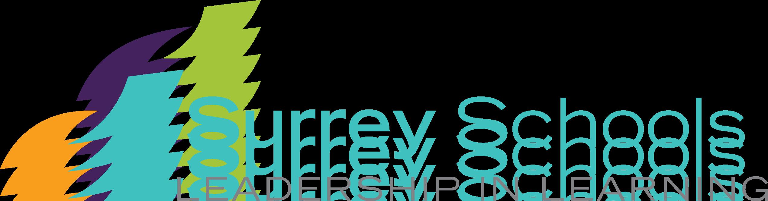 Image result for surrey schools
